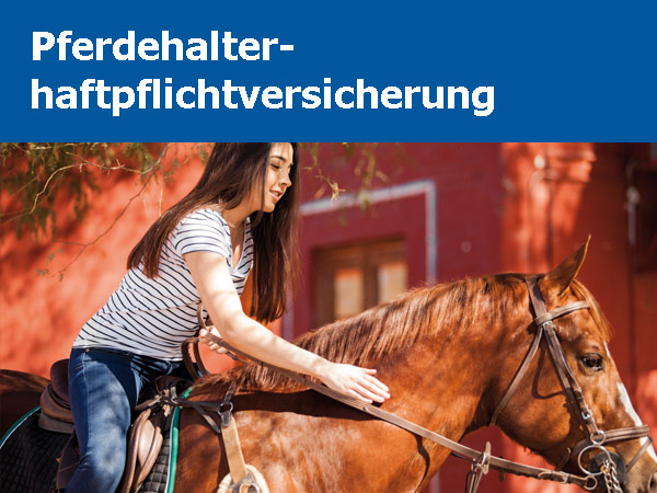 Konzept und Marketing allsafe cavallo Produktmotiv