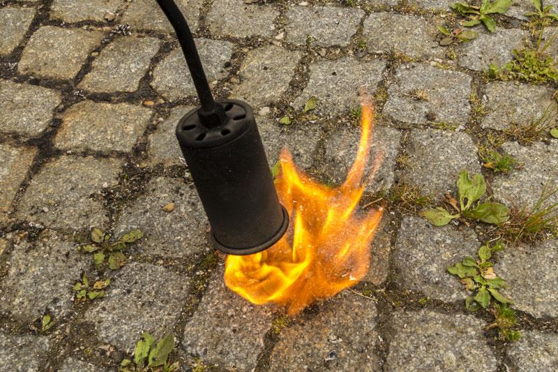 grob fahrlässiges abflammen